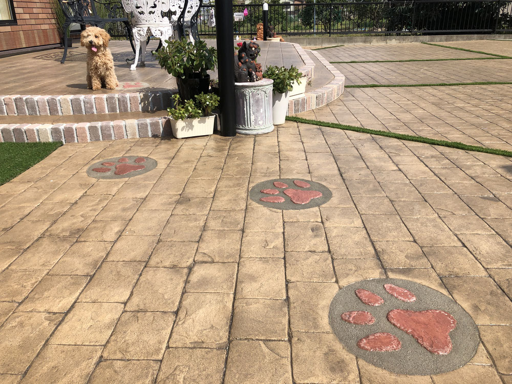 スタンプコンクリート デザインコンクリート 庭 犬 放し飼い ドッグガーデン 遊び 走り回る DIY