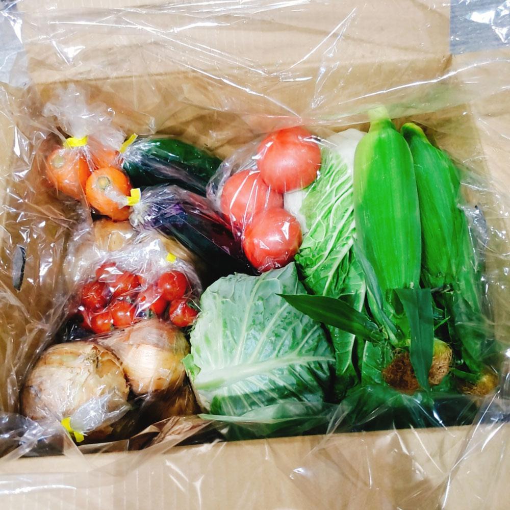 雲仙普賢岳の甘くてミネラル豊富な野菜