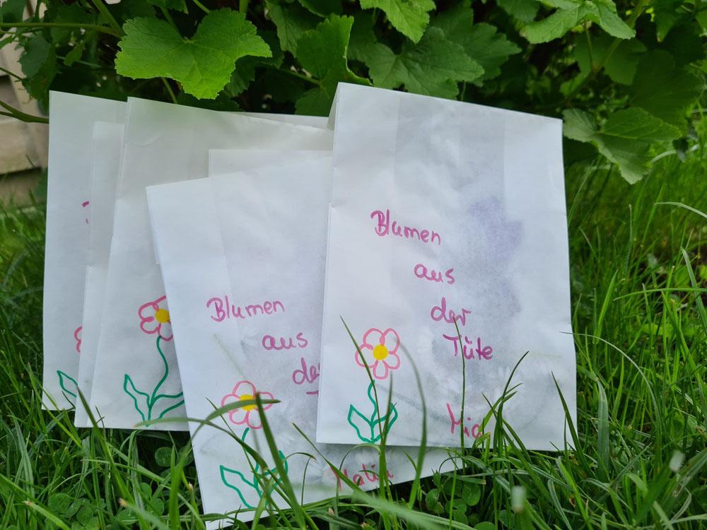 Blumen aus der Tüte