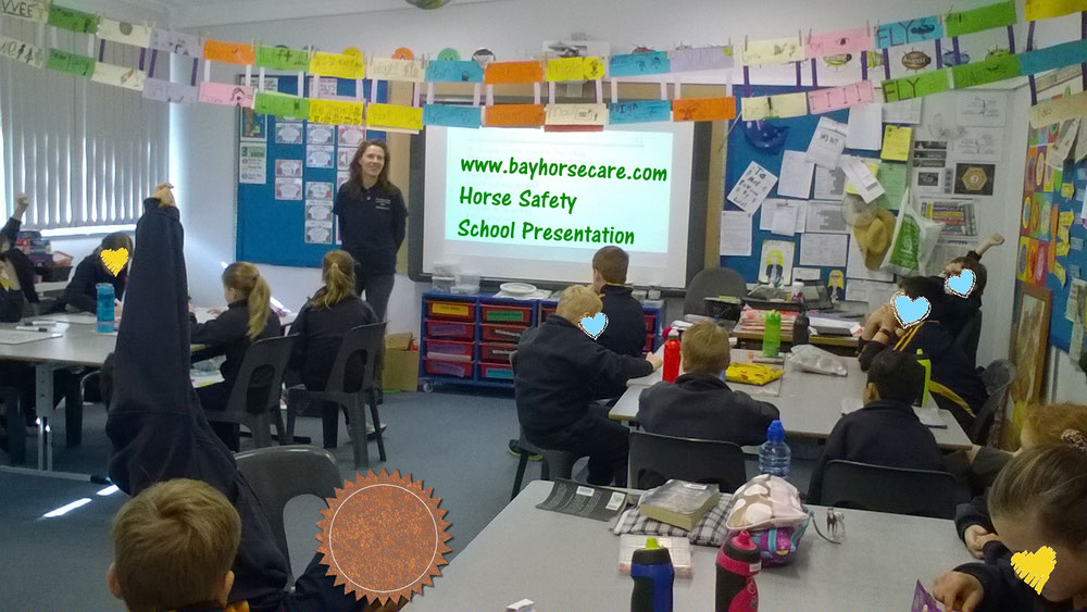 horse safety school presentations horse riding coach adelaide