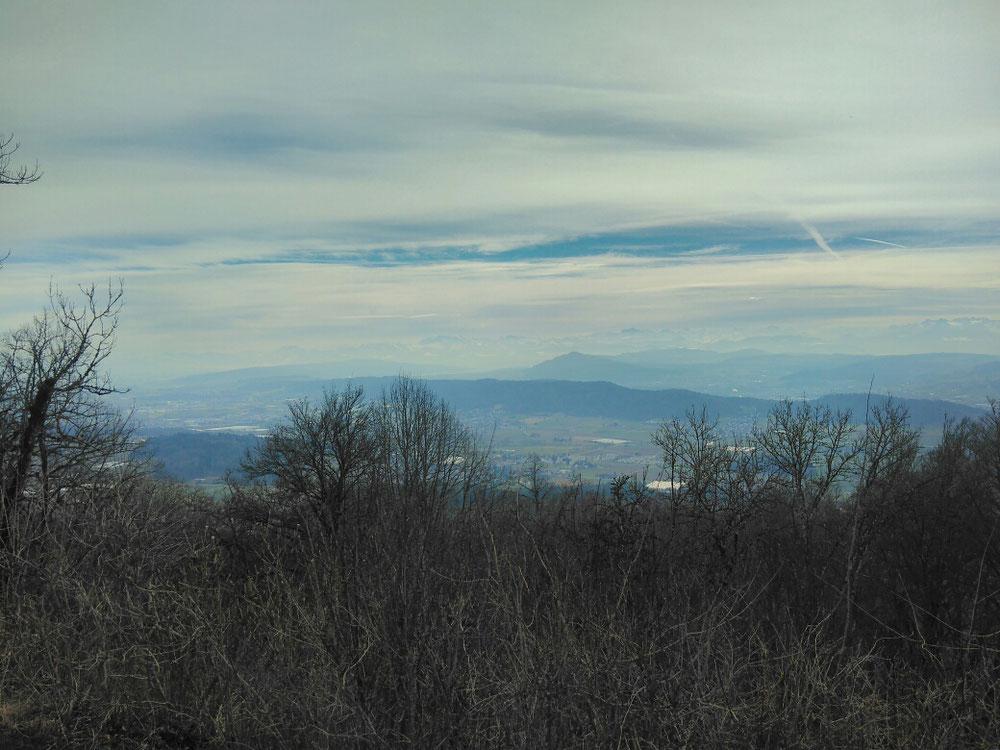 Ausblick vom Burghorn
