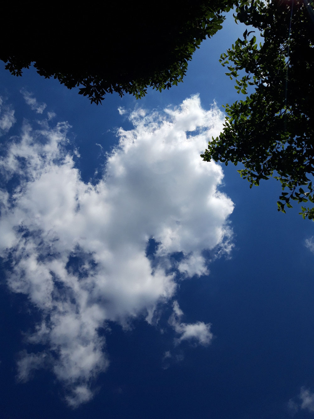 Taking a break and watching the clouds