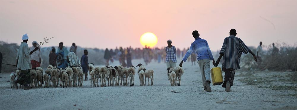أطفال يحملون جرار مياه في منطقة جوهر بالصومال (2013). ©الأمم المتحدة/Tobin Jones