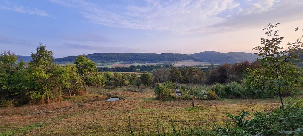Das LBV-Grundstück der Kreisgruppe Forchheim in Hagenbach (Foto © Joschua Müller)