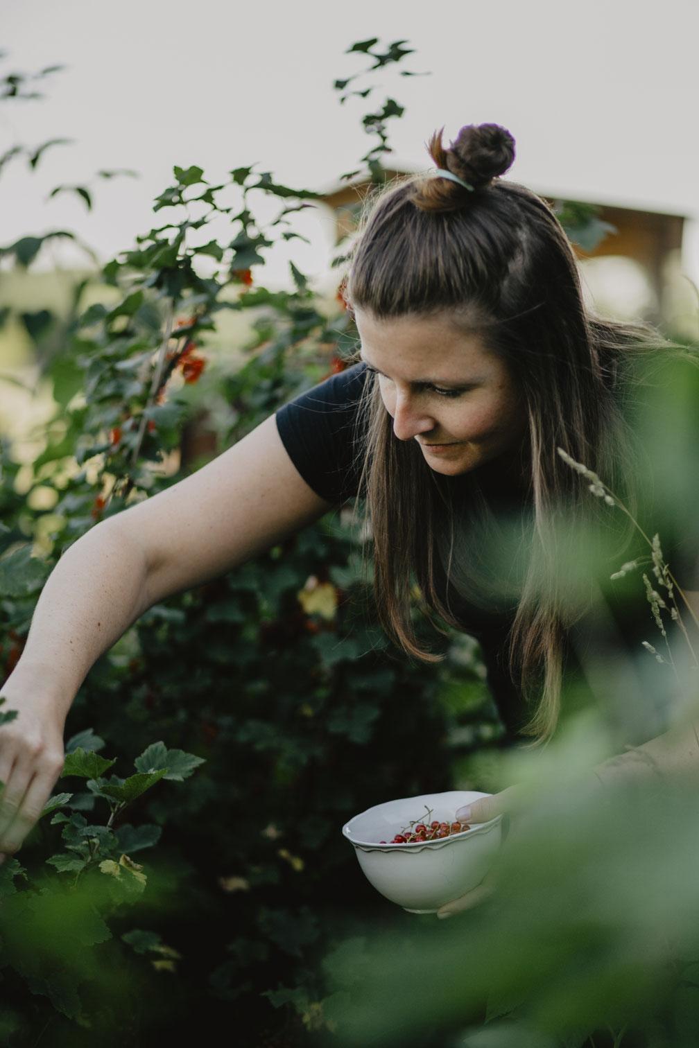 Farm to Table - Steffi beim Johannisbeeren pflücken