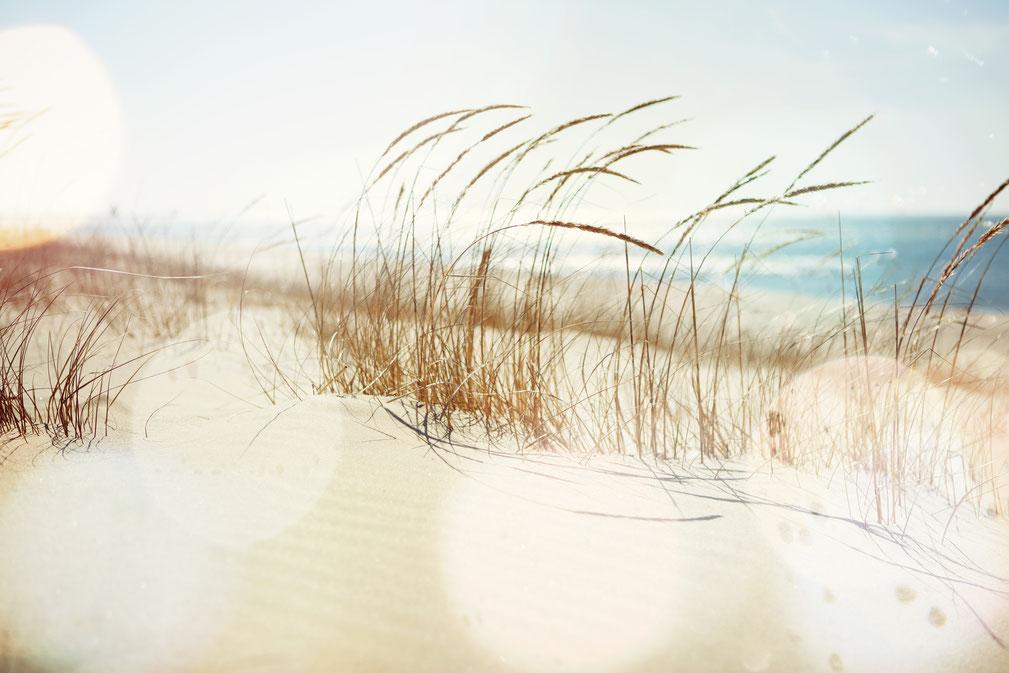 Entspannung in der Natur - Hängematten und Hängeschaukeln lassen träumen