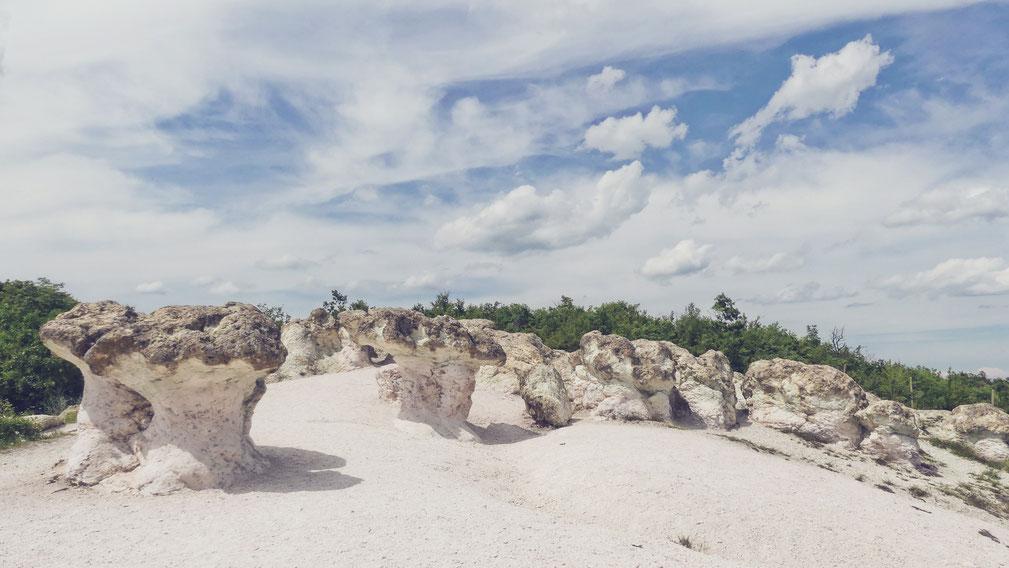 bigousteppes bulgarie balkans champignons pierre