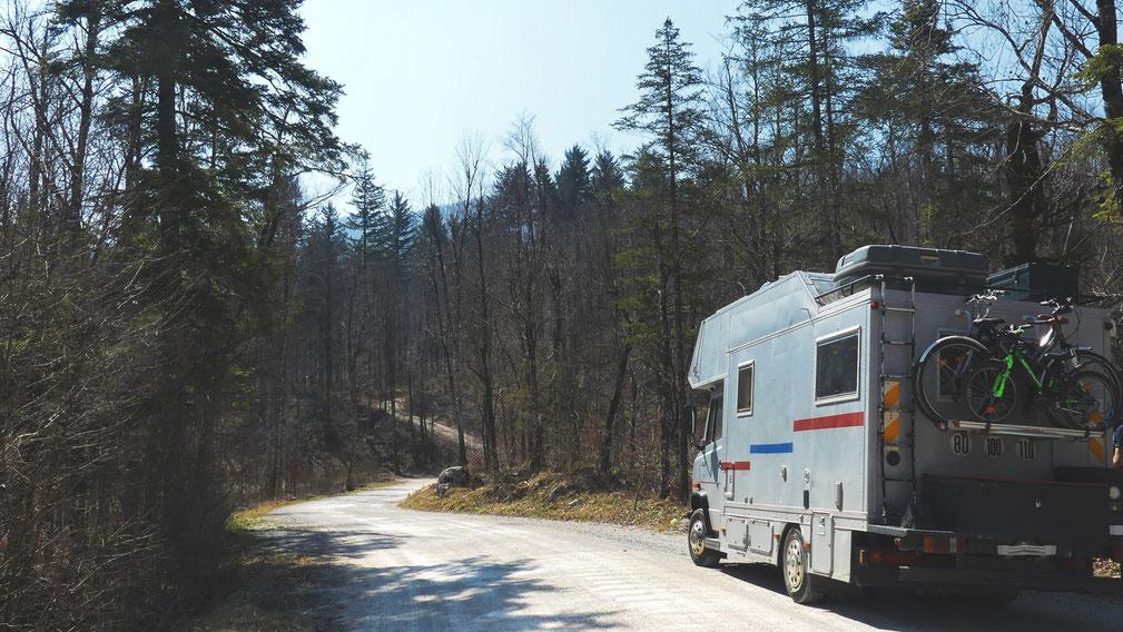 bigousteppes mercedes slovénie route forêt