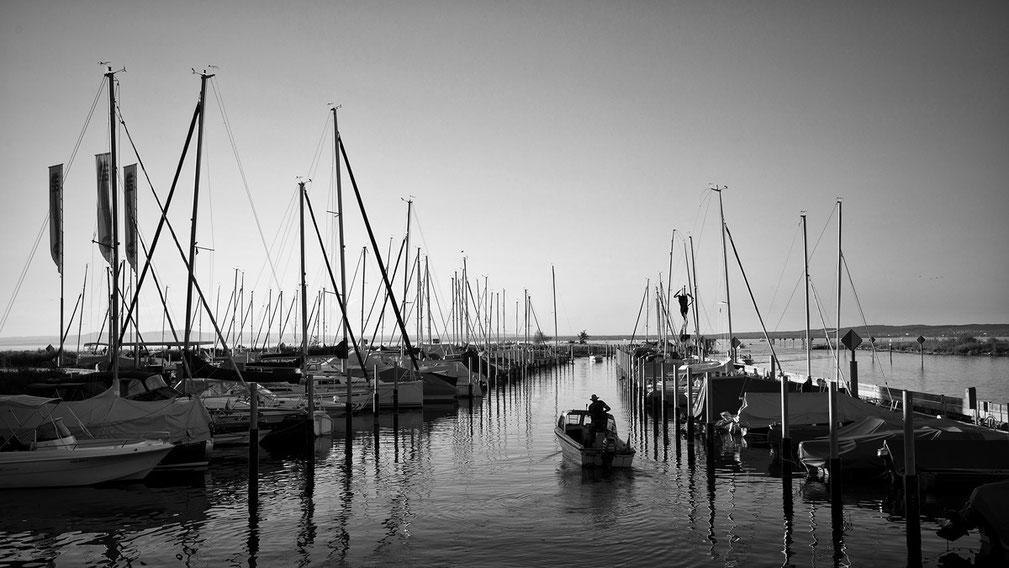 Schiffe  auf dem Bodensee, schwarzweiss