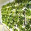 パイプ型緑化システム