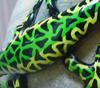 1/6 Rückenlinie: Hellgrün/giftgrün