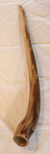 Didgeridoo Momo