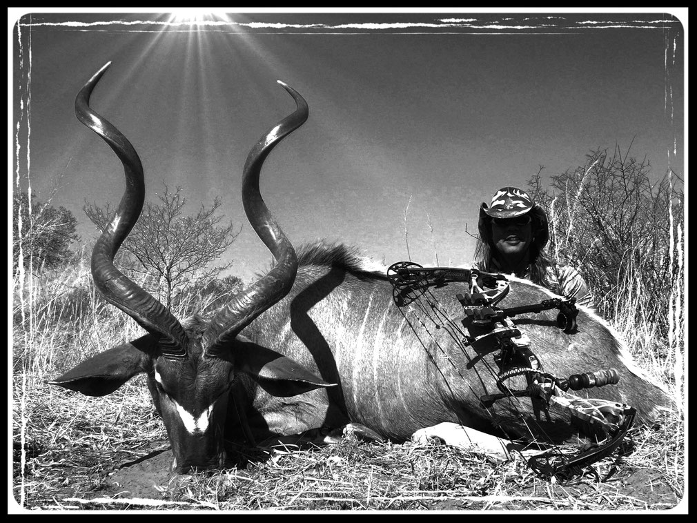 Juan C. Levesque, Bowhunter, with a Greater kudu (Tragelaphus strepsiceros) taken at 30 yards from an elevated stand; 300 miles north of Johannesburg, South Africa.