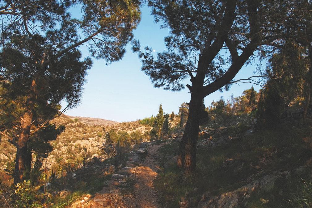 bigousteppes chemin blagaj bosnie herzégovine
