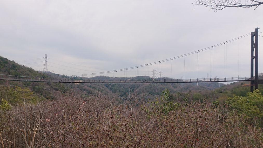 山の中腹から見る吊り橋