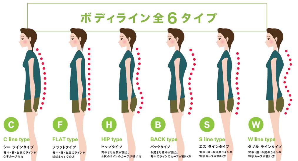 6種類の背面ライン