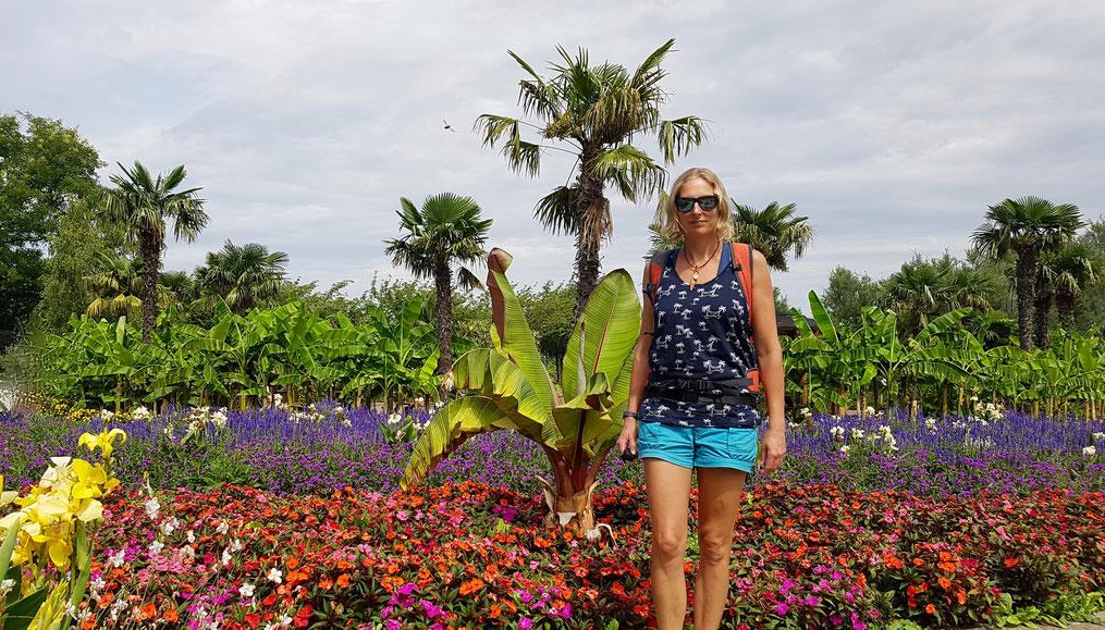 Urlaub in der Stadt. Die Stadt Wien hat mit den Blumengärten Hirschstetten, der Bevölkerung einen Tag gratis Urlaub ermöglicht.