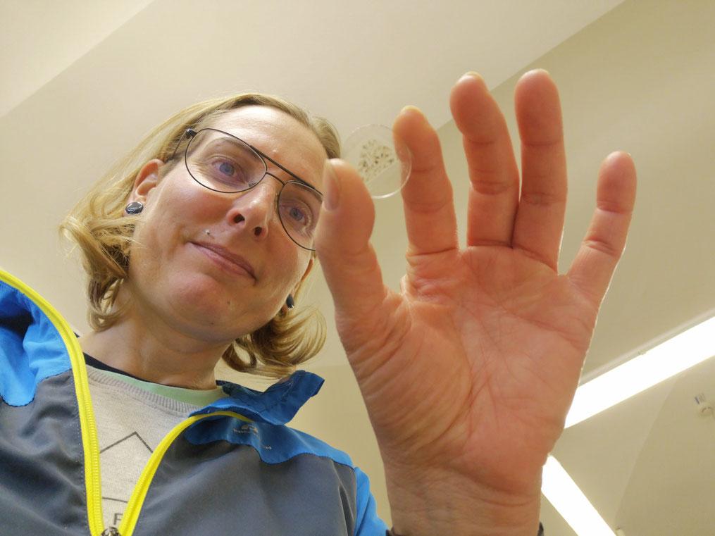 Unpackbar. Ich habe gerade die einmalige Gelegenheit einen echten Marsmeteoriten in meinen Fingern zu halten.