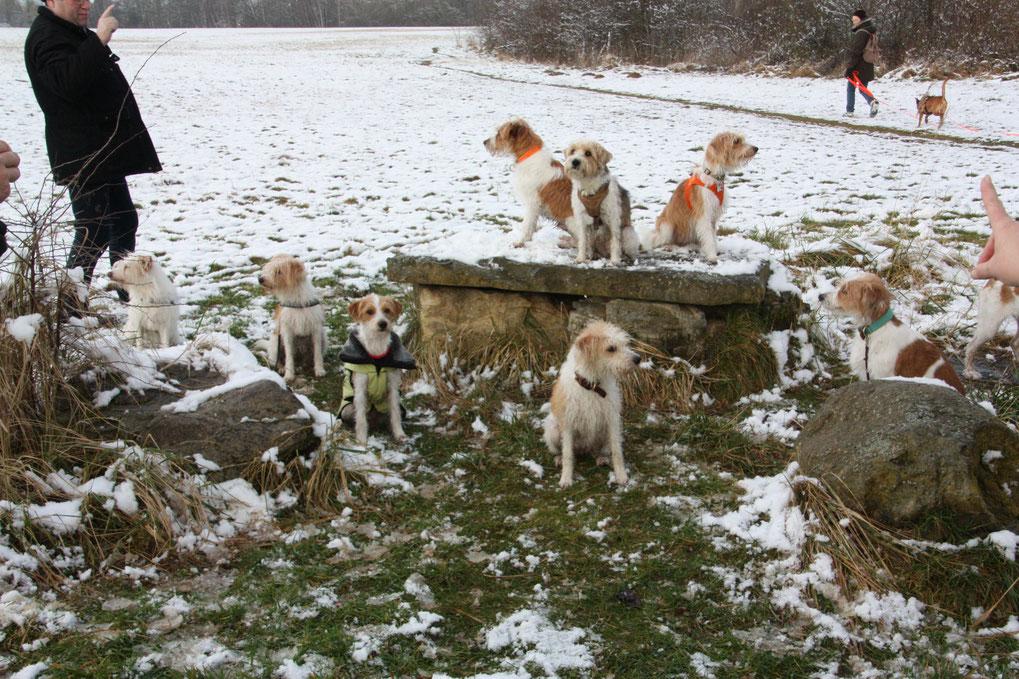 Gruppenfoto vom 47. Braunschweiger Kromi-Spaziergang am 04.02.2018
