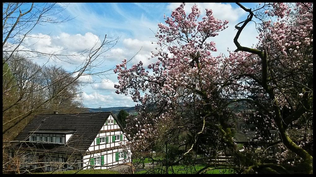 Blick von der Sonnenterrasse des Hotels Bergische Schweiz