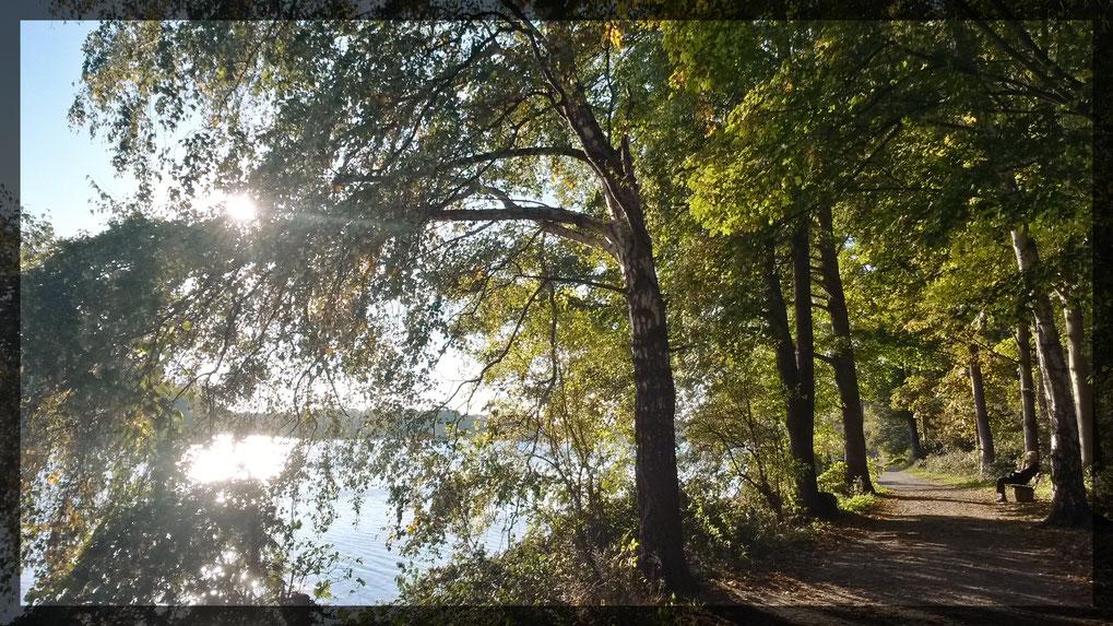 Am Unterbacher See