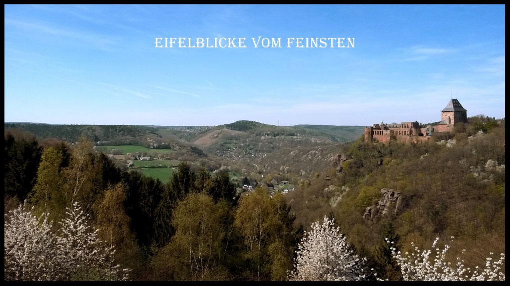Eifelblick auf Burg Nideggen