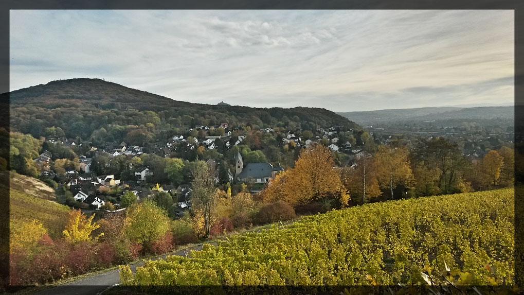 Schöner Blick auf Oberdollendorf vom Weinberg aus gesehen- in der Ferne erkennbar: der Drachenfels