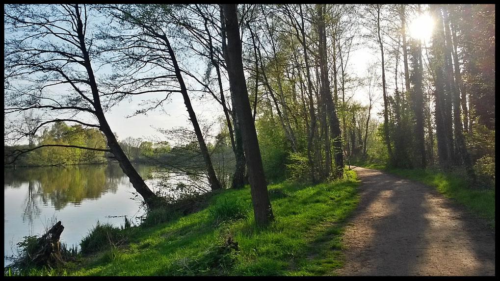 Abendsonne am Borner See, einfach Idylle pur!