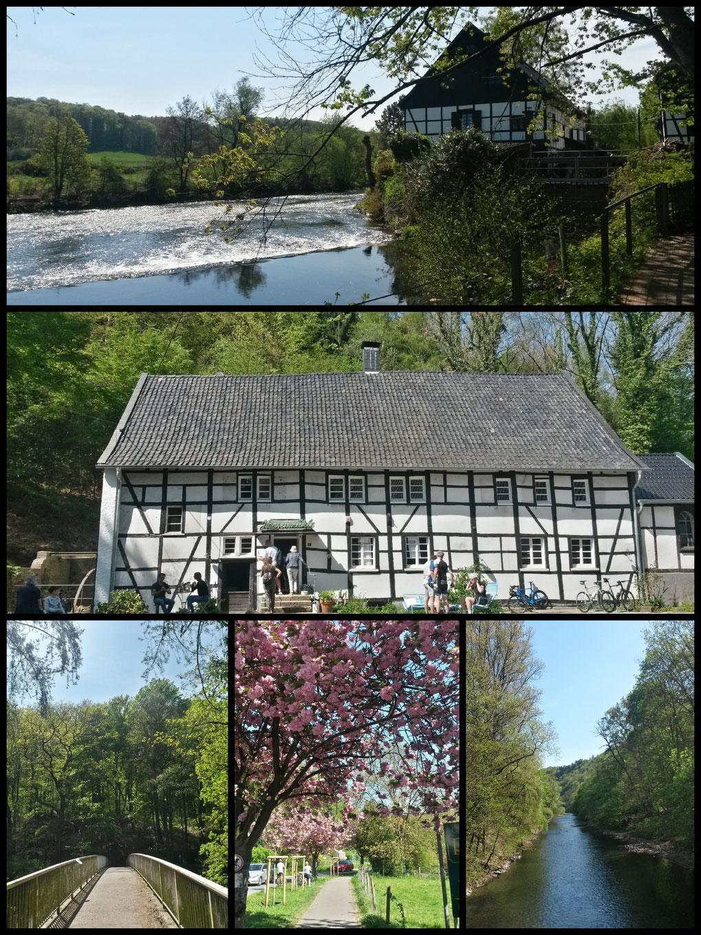 Wupperbrücken, Haasenmühle, Cherry blossom und Wipperkotten - nur einige Highlights dieser fantastischen Tour
