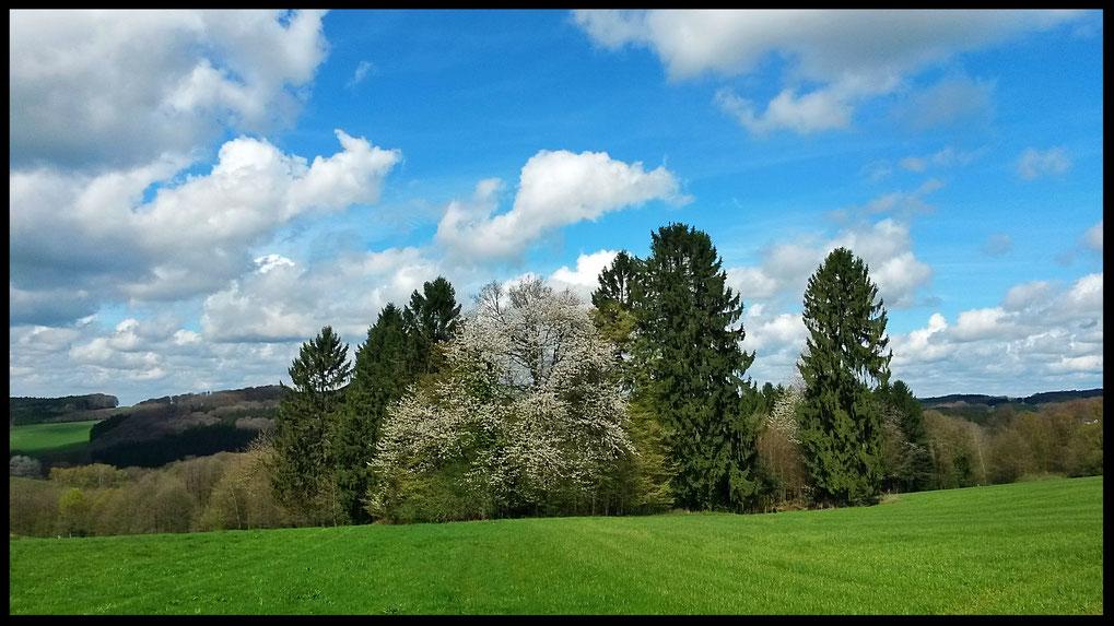 Frühling über der Bergischen Schweiz