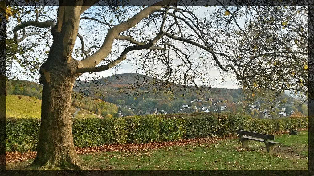 """Picknickbänke mit schönen Aussichten am Aussichtspunkt """"Hülle"""" oberhalb des Weinberges"""