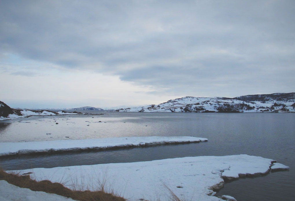 bigousteppes norvège nord
