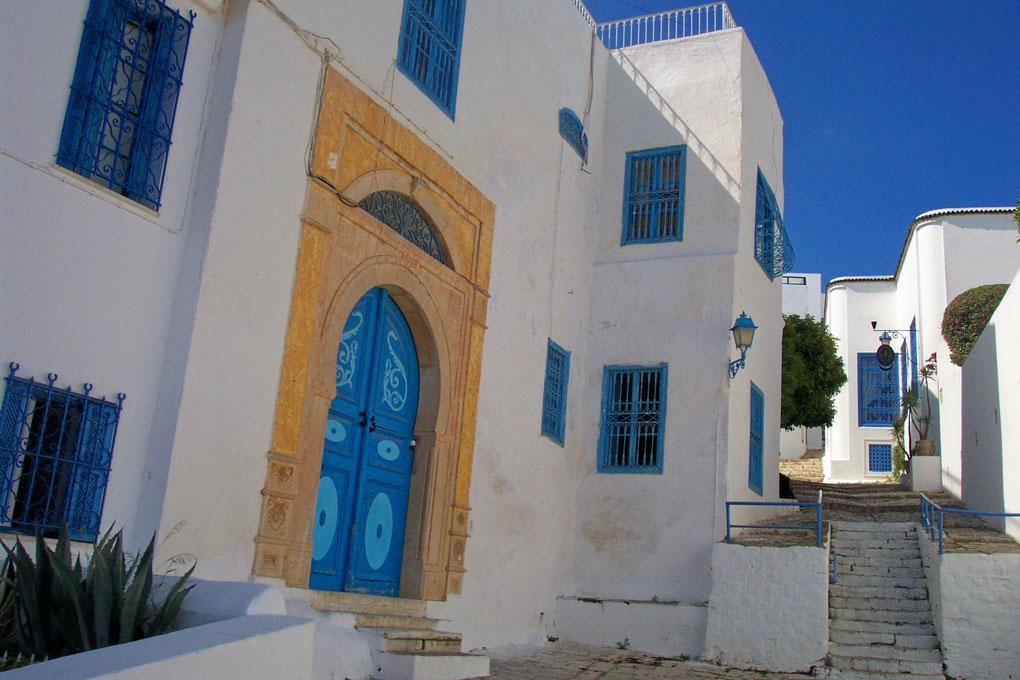 Le bleu et le blanc de Sidi Bou Saïd joli village du nord de la Tunisie
