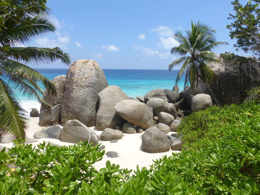 Merveilleuse plage des Seychelle parmi une multitudes d'autres toutes aussi belles les une que les autres avec leurs blocs de granit impressionnant et la nature luxuriante...