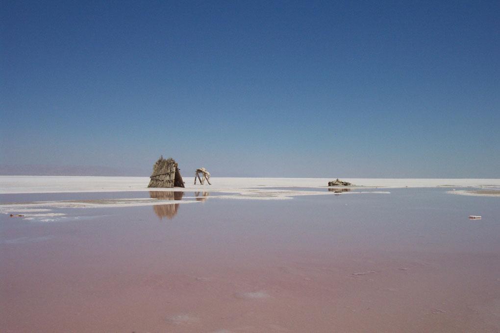 Lac salé dans la région de Djerba en Tunisie