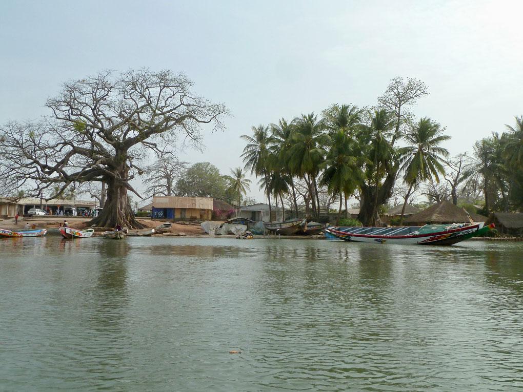 Le sud du Sénégal abrite la région de Casamance, véritable endroit de paradis.