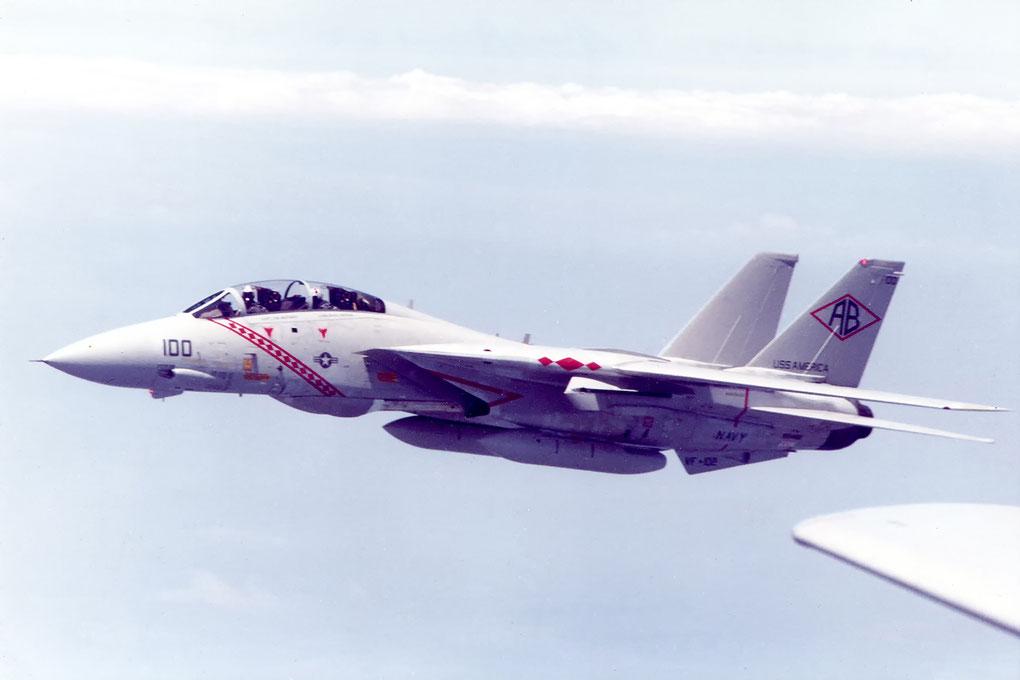 Grumman F-14A Tomcat Squadron VF 102