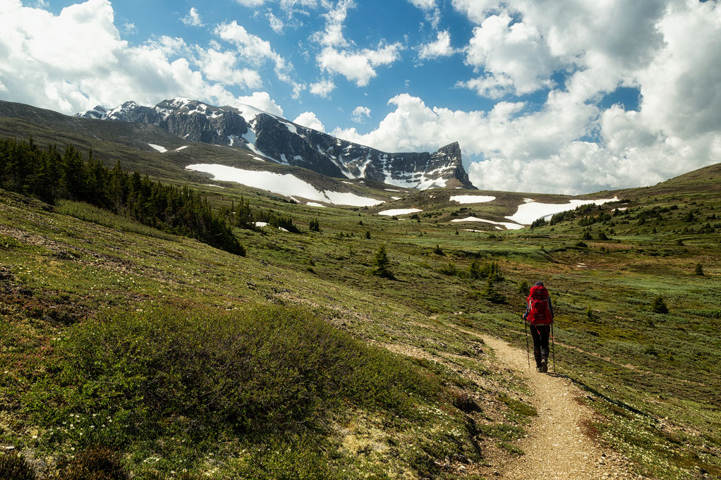 The Skyline Trail Toward the Northern Trail Head - A hiking guide to the Skyline Trail in Jasper National Park