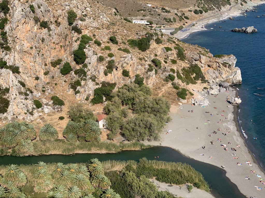 Griechenland, Kreta, Sehenswürdigkeit, Reisebericht, highlight, Urlaub, Plakias, palm forest, Palme, Palmenwald, Strand, baden