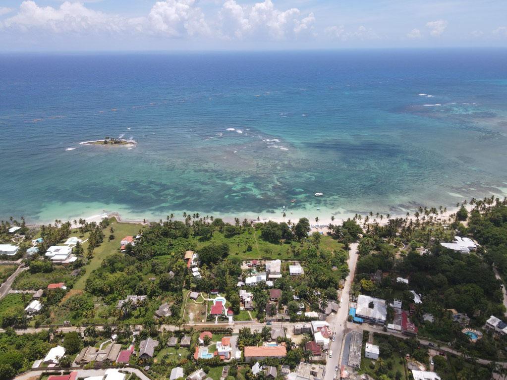 Samana, Las Galeras, Karibik, Strand, Palmen