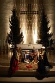 Krippe und Tannenbäume in Christus König