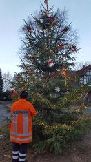 Weihnachtsbaumstellen Soderstorf 2018