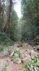 落差33mの白藤の滝