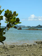 Kapowairua-ArohaIsland 185km