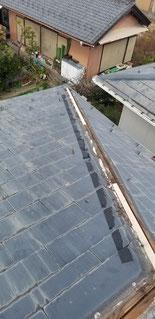 木がなくなっており屋根と屋根の間に隙間が見える