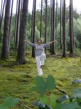 Qigong im Wald
