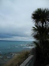 Kaikoura-Picton 155km