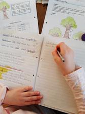 Nachhilfeunterricht, Online Nachhilfe, Nachhilfe Grasberg, Nachhilfe, Nachhilfe Deutsch, Nachhilfe Mathe, Förderunterricht