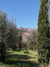 Randonnée Rocher de Roquebrune sur Argens