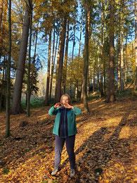 Qigong: die Waldkraft in den Körper aufnehmen
